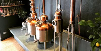Gin Stills Tour with G&T, Tastings & Cocktail or Gin Masterclass with 8 Tastings & Nibbles, from £19