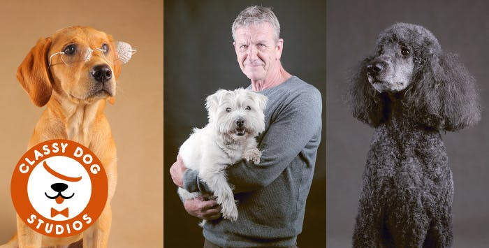 Dog Photo Shoot with Canvas, from £39
