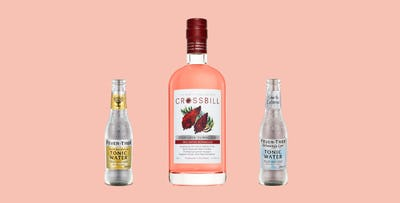 £24.95 for a 50cl Bottle of Crossbill Staghorn Sumac Gin + 2 Bottles of Fever Tree Tonic with Free Delivery