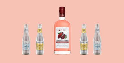 £24.95 for a 50cl Bottle of Crossbill Staghorn Sumac Gin + 4 Bottles of Fever Tree Tonic