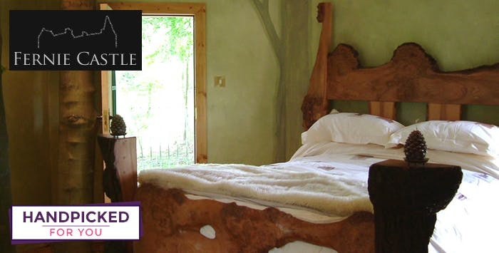 £299 for an Overnight Stay in Treehouse with Dinner + Prosecco for 2