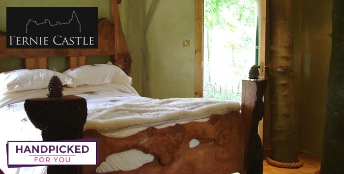 £299 for an Overnight Stay in Treehouse with Prosecco, Chocolates & Cheeseboard on Arrival + Dinner for 2