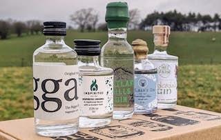 Lanarkshire Gin Set