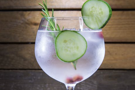 £24 for Entry for 1 to The Scottish Gantry Gin Festival in Edinburgh on 24th March