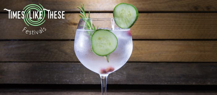 £29 for Entry for 1 to Times Like These Gin Festival in Stirling on Saturday 2nd July