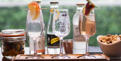 £28 for a Scottish Gin Flight + Nibbles for 2