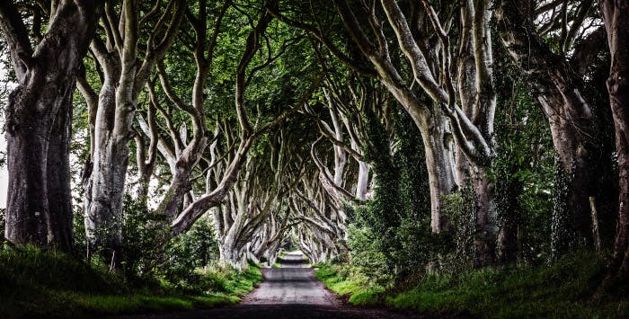 Game of Thrones Tour + Belfast Stay for 2, from £218
