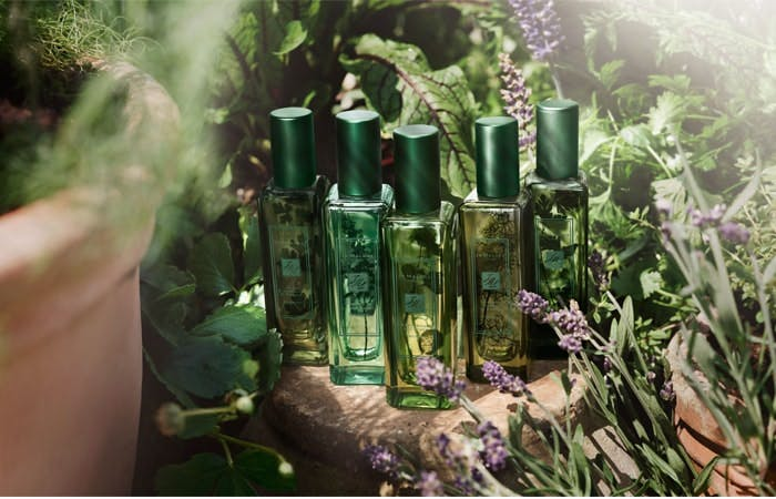 In the Herb Garden with Jo Malone