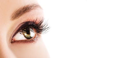 £27 for a LVL Lash Lift with Lash Tint