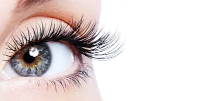 £24 for a LVL Lash Lift & Lash Tint with Brow Wax & Shape